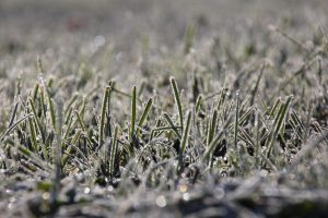 Winterization of Lawn Irrigation Systems